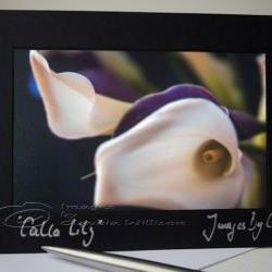 """Greeting photo card Flower photo card White calla lily 5x7"""""""